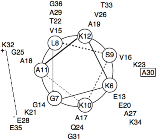 Figure 7 From Synthesis And Evaluation Of Synuclein 636