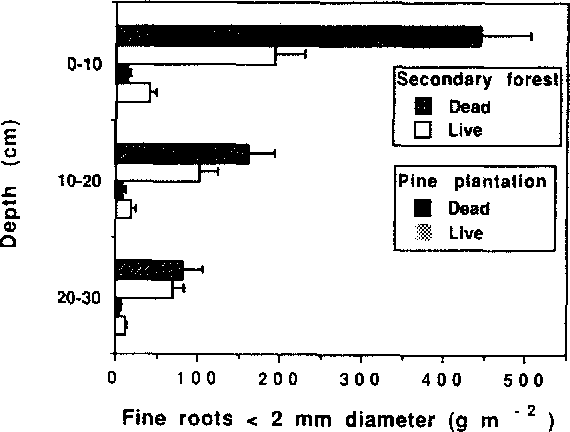 Fig. 7. Distribution of mean mass (-+95% confidence intervals) of fine dead and live roots in the soil profile, 0-30 cm depth, in a Pinus caribaea plantation and a paired native secondary forest,