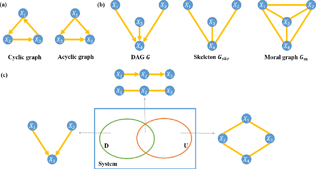 Figure 1 for Causal inference of brain connectivity from fMRI with $ψ$-Learning Incorporated Linear non-Gaussian Acyclic Model ($ψ$-LiNGAM)