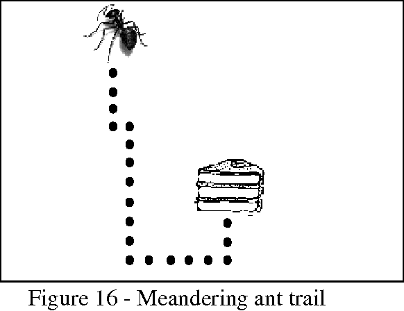Figure 16 - Meandering ant trail
