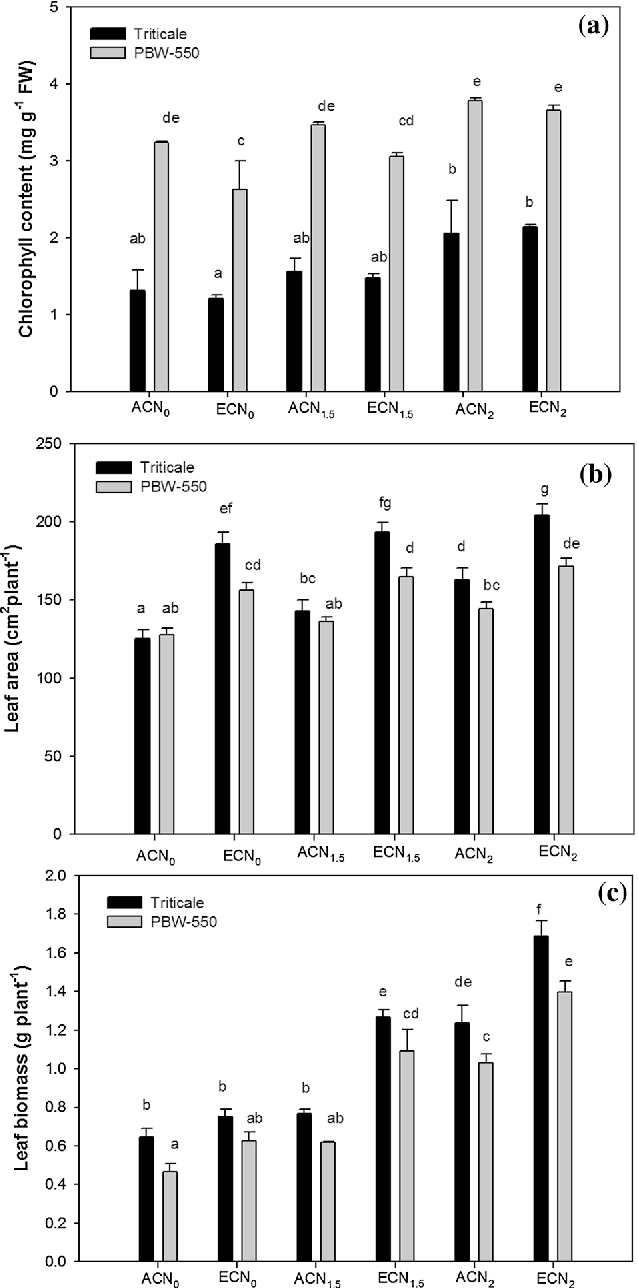 Figure 1 from Additional N supply improves grain yield in Triticale