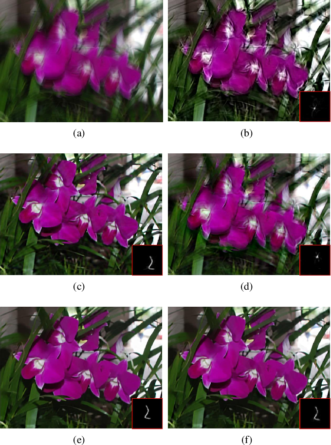 Figure 4 for Single Image Blind Deblurring Using Multi-Scale Latent Structure Prior
