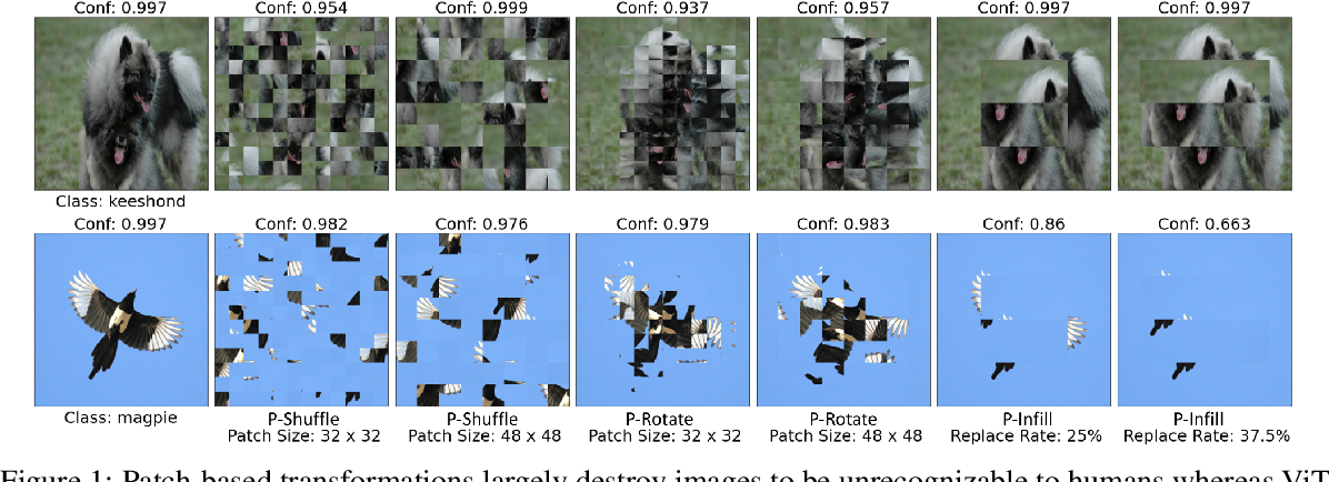 Figure 1 for Understanding and Improving Robustness of Vision Transformers through Patch-based Negative Augmentation