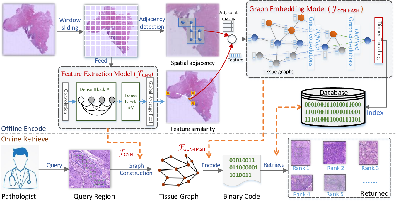 Figure 1 for Histopathology WSI Encoding based on GCNs for Scalable and Efficient Retrieval of Diagnostically Relevant Regions
