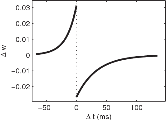 Figure 2. The STDP modification function. We plotted the additive weight updates as a function of the difference between the presynaptic spike time and the postsynaptic one. We used an exponential law (see Materials and Methods). The left part corresponds to Long Term Potentiation (LTP) and the right part to Long Term Depression (LTD). doi:10.1371/journal.pone.0001377.g002