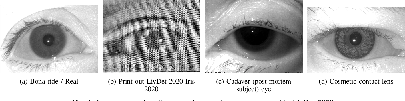Figure 1 for Synthetic Periocular Iris PAI from a Small Set of Near-Infrared-Images