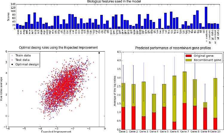 Figure 2 for Bayesian Optimization for Synthetic Gene Design