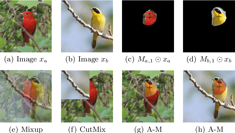Figure 1 for Attribute Mix: Semantic Data Augmentation for Fine Grained Recognition