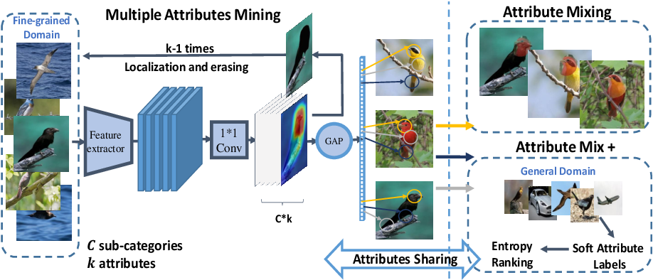 Figure 3 for Attribute Mix: Semantic Data Augmentation for Fine Grained Recognition