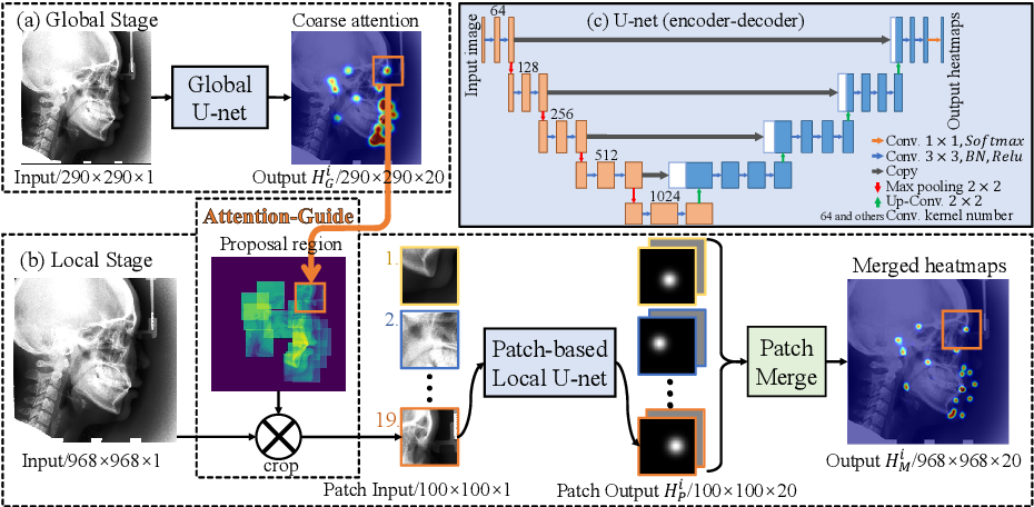 Figure 1 for An Attention-Guided Deep Regression Model for Landmark Detection in Cephalograms