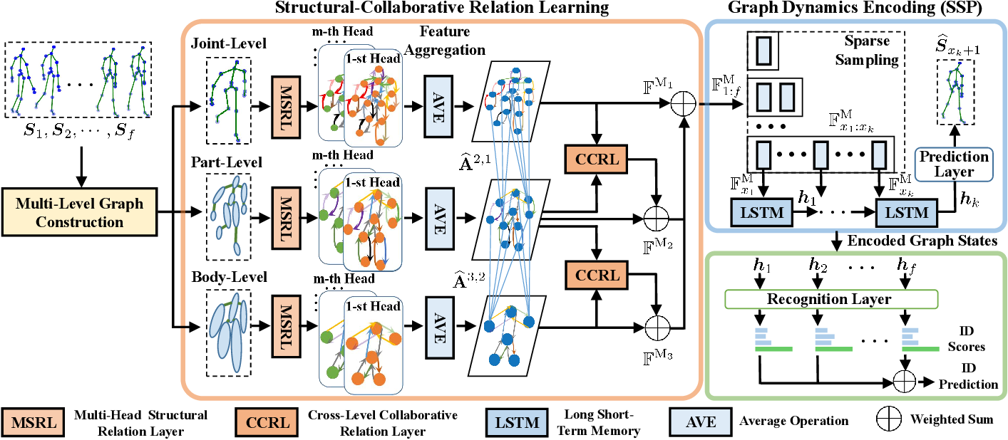 Figure 3 for Multi-Level Graph Encoding with Structural-Collaborative Relation Learning for Skeleton-Based Person Re-Identification