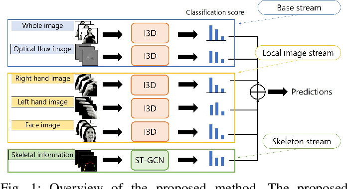 Figure 1 for Word-level Sign Language Recognition with Multi-stream Neural Networks Focusing on Local Regions