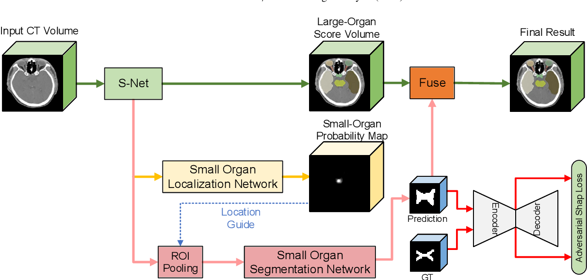 Figure 3 for FocusNetv2: Imbalanced Large and Small Organ Segmentation with Adversarial Shape Constraint for Head and Neck CT Images