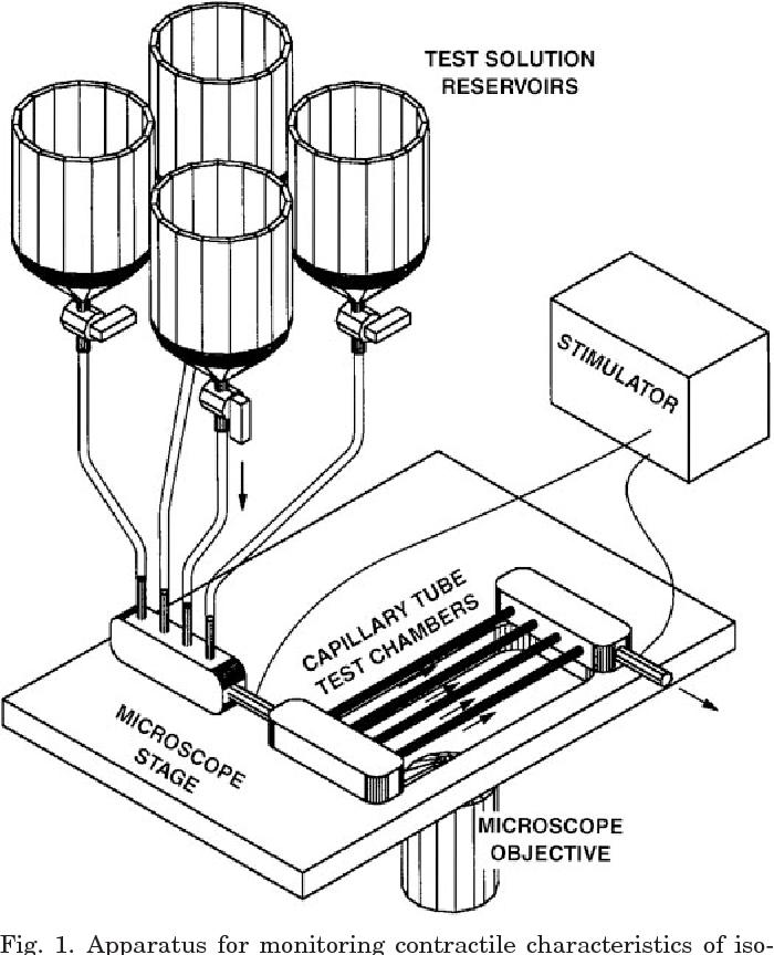 Multitrack System For Superfusing Isolated Cardiac Myocytes