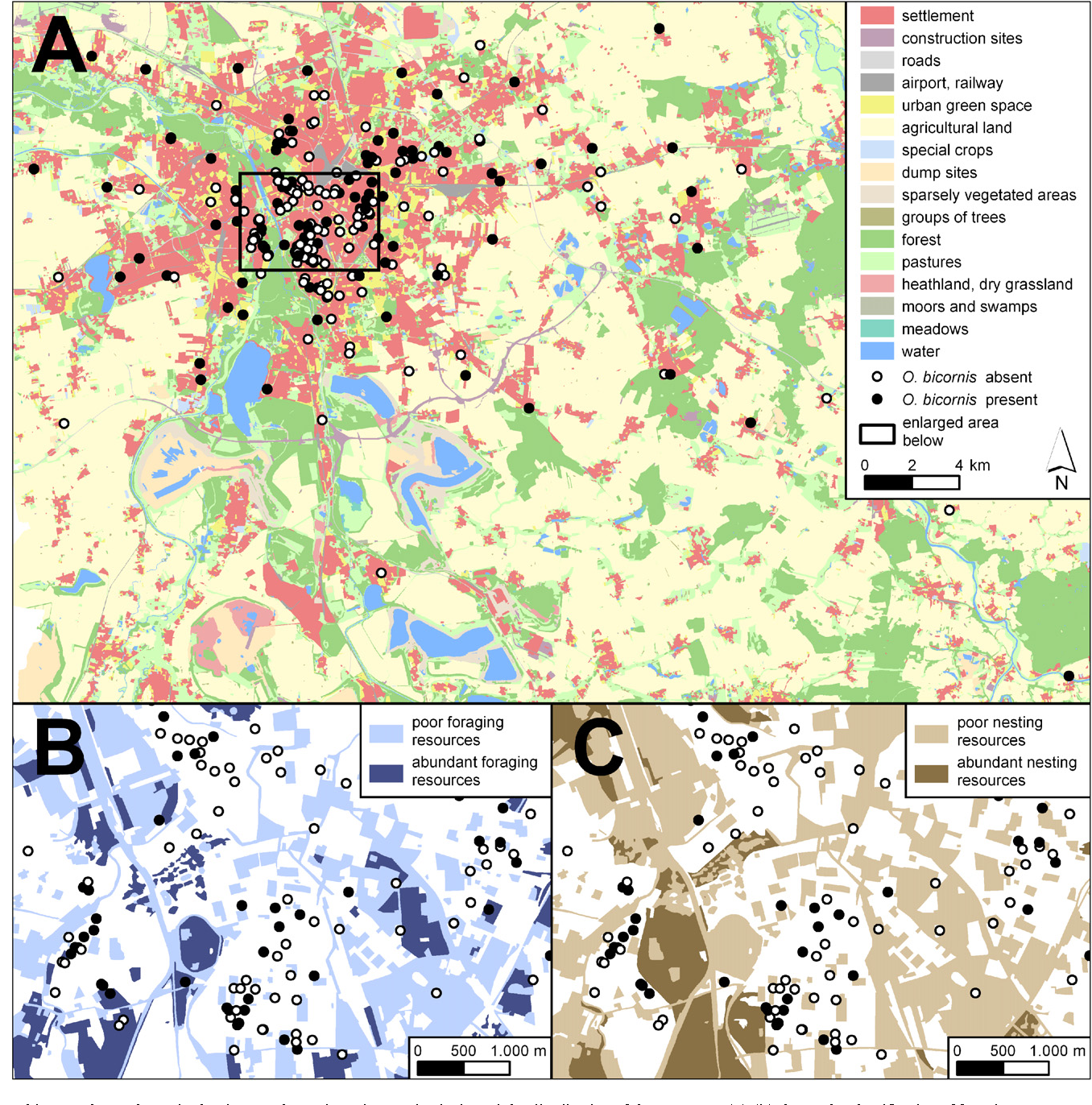 Microsite conditions dominate habitat selection of the red mason bee figure 1 freerunsca Gallery