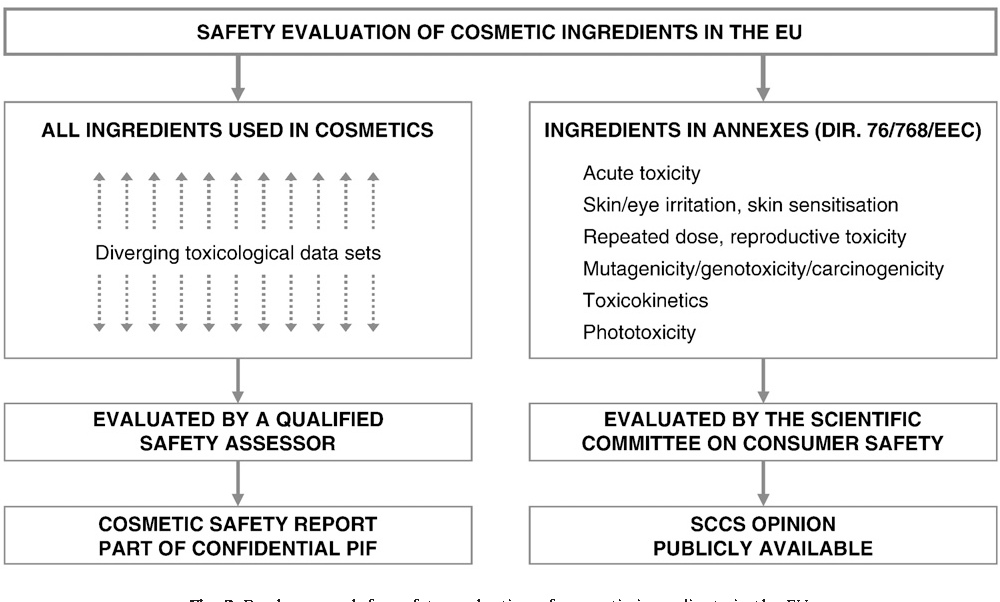 Human health safety evaluation of cosmetics in the EU: a legally