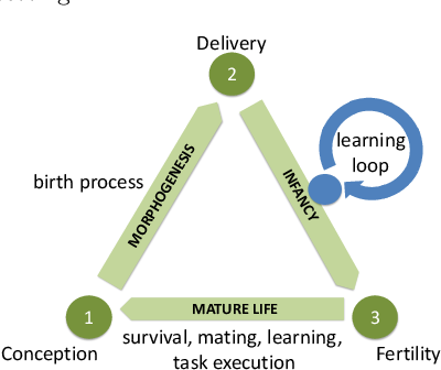 Figure 1 for Learning Locomotion Skills in Evolvable Robots