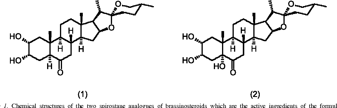 Effect of spirostane analogues of brassinosteroids on callus figure 1 ccuart Image collections