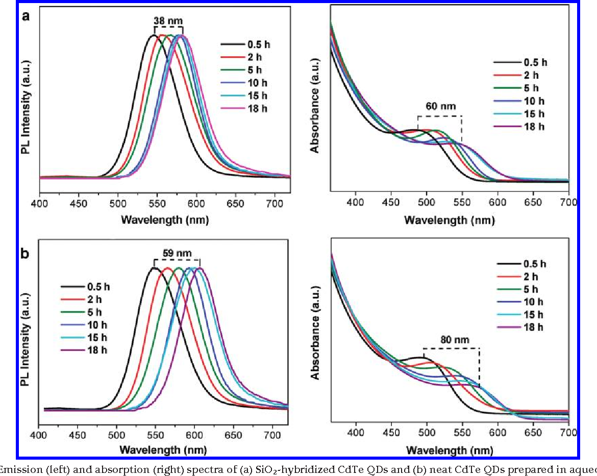 FIGURE 1. Emission (left) and absorption (right) spectra of (a) SiO2-hybridized CdTe QDs and (b) neat CdTe QDs prepared in aqueous solution using MPA as ligand at different reaction times.