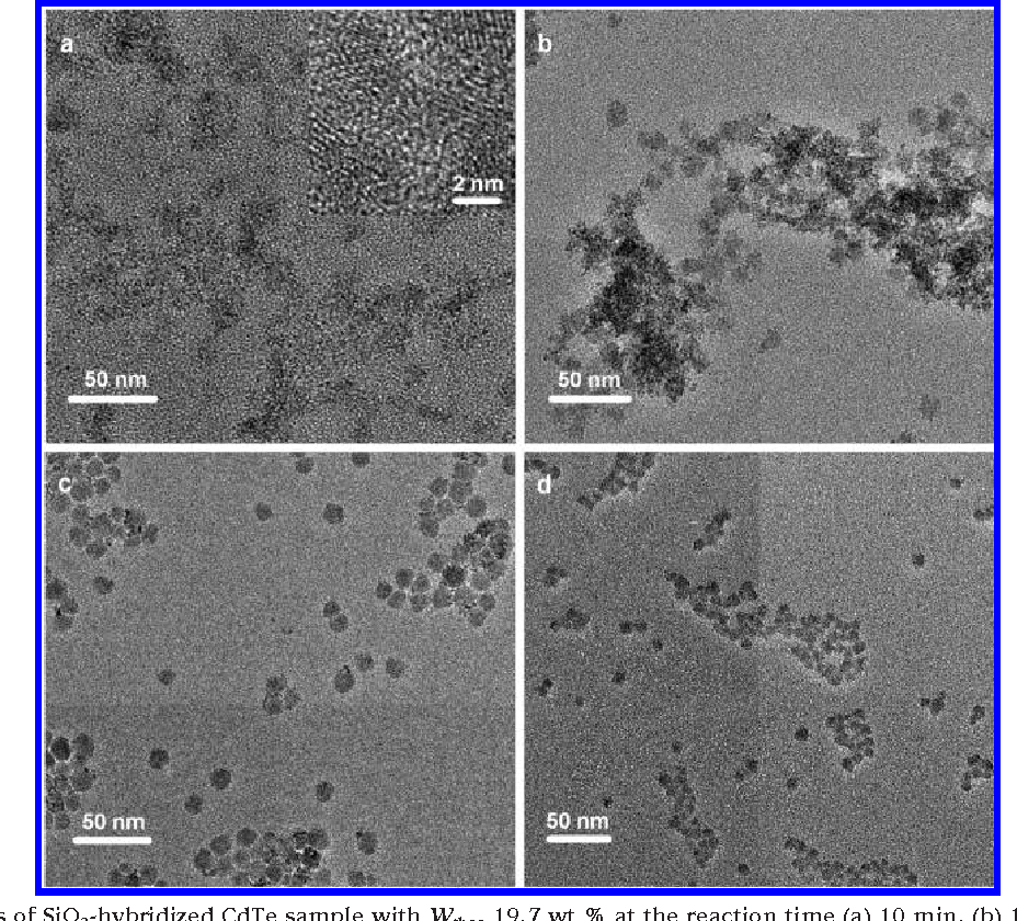 FIGURE 6. TEM images of SiO2-hybridized CdTe sample with Wtheo 19.7 wt % at the reaction time (a) 10 min, (b) 1 h, (c) 5 h, and (d) 18 h.