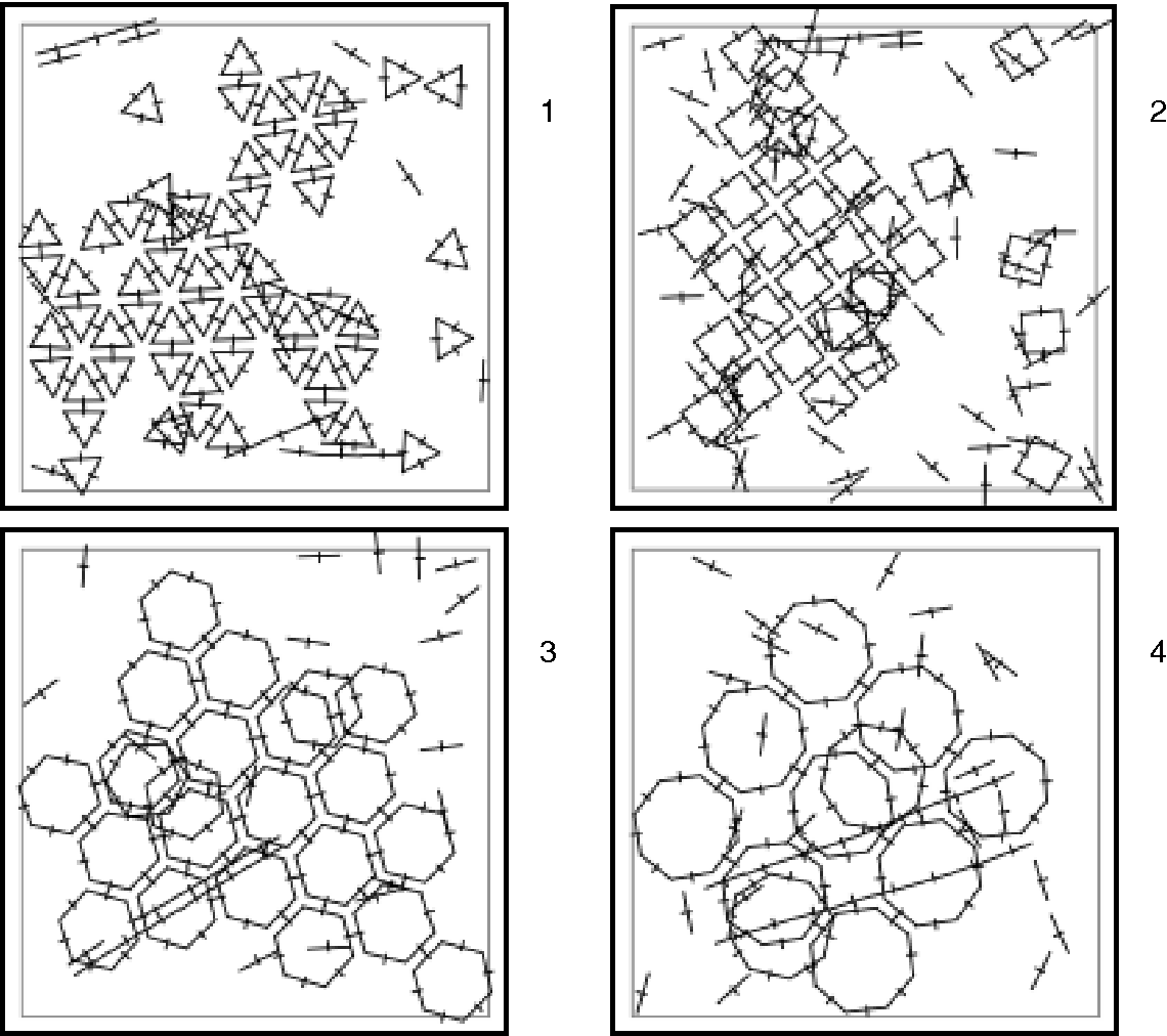 Figure 4 for Self-Replicating Strands that Self-Assemble into User-Specified Meshes