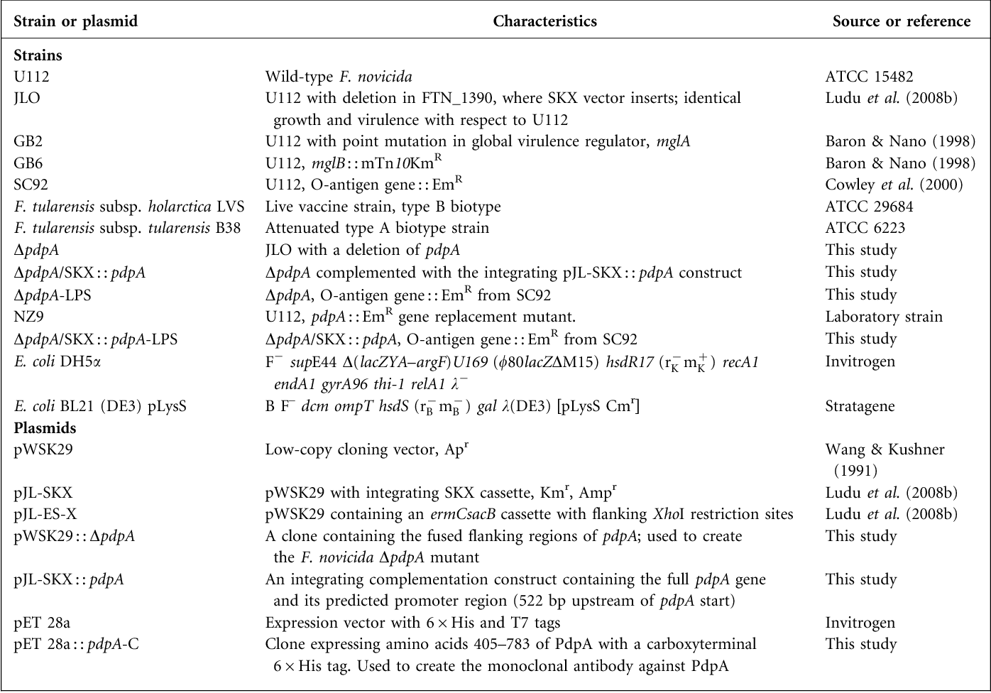 Table 1. Bacterial strains and plasmids used in this study