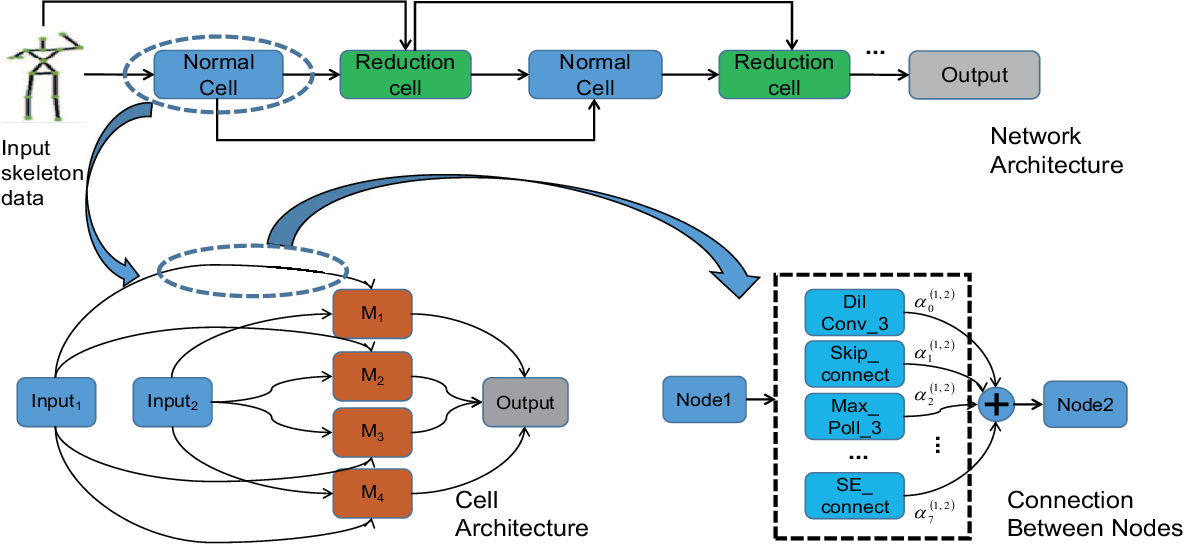 Figure 1 for SAR-NAS: Skeleton-based Action Recognition via Neural Architecture Searching