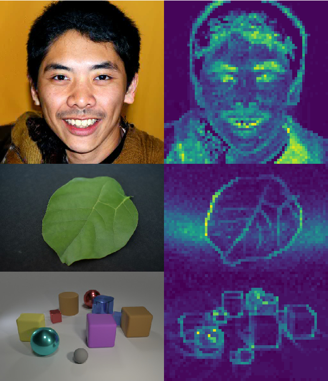 Figure 1 for Generating Images with Sparse Representations