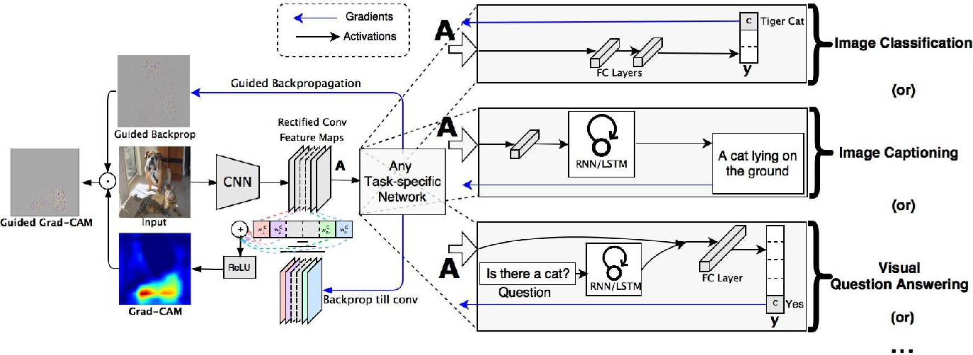 Figure 3 for Grad-CAM: Visual Explanations from Deep Networks via Gradient-based Localization