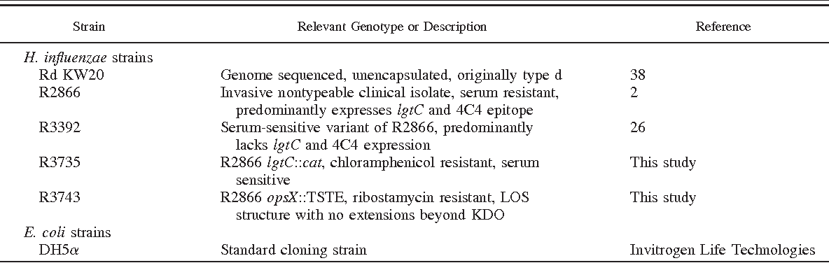 Table I. Bacterial strains used in this study