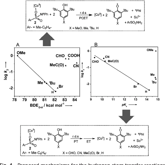 Figure 4 from A cobalt(ii) iminoiodane complex and its