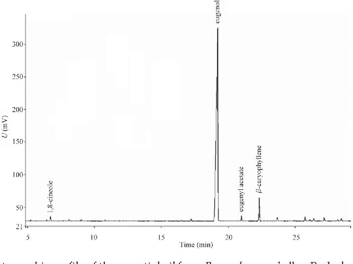 Fig. 1. Chromatographic profile of the essential oil from P. pseudocaryophyllus. Peaks lower than 0.1 % were not identified.