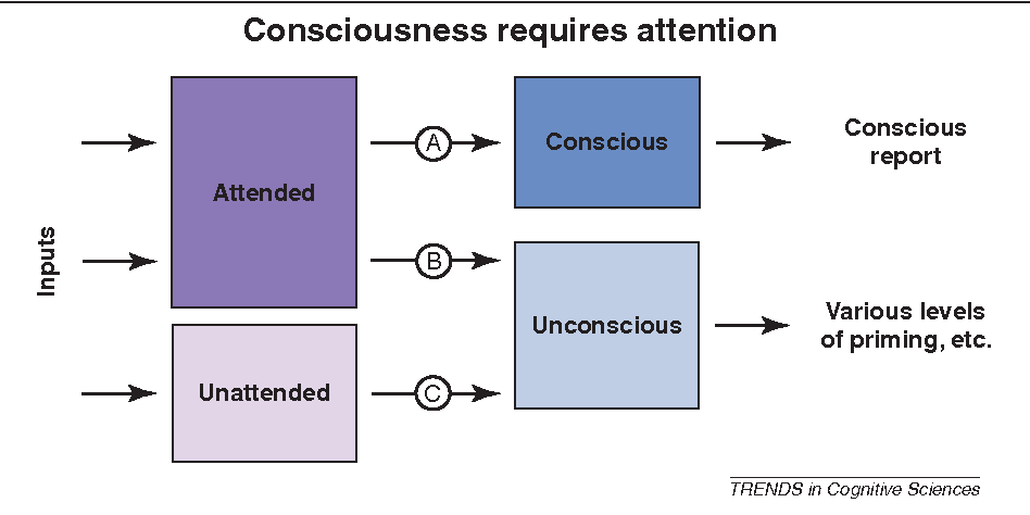 what is the relationship between awareness and consciousness