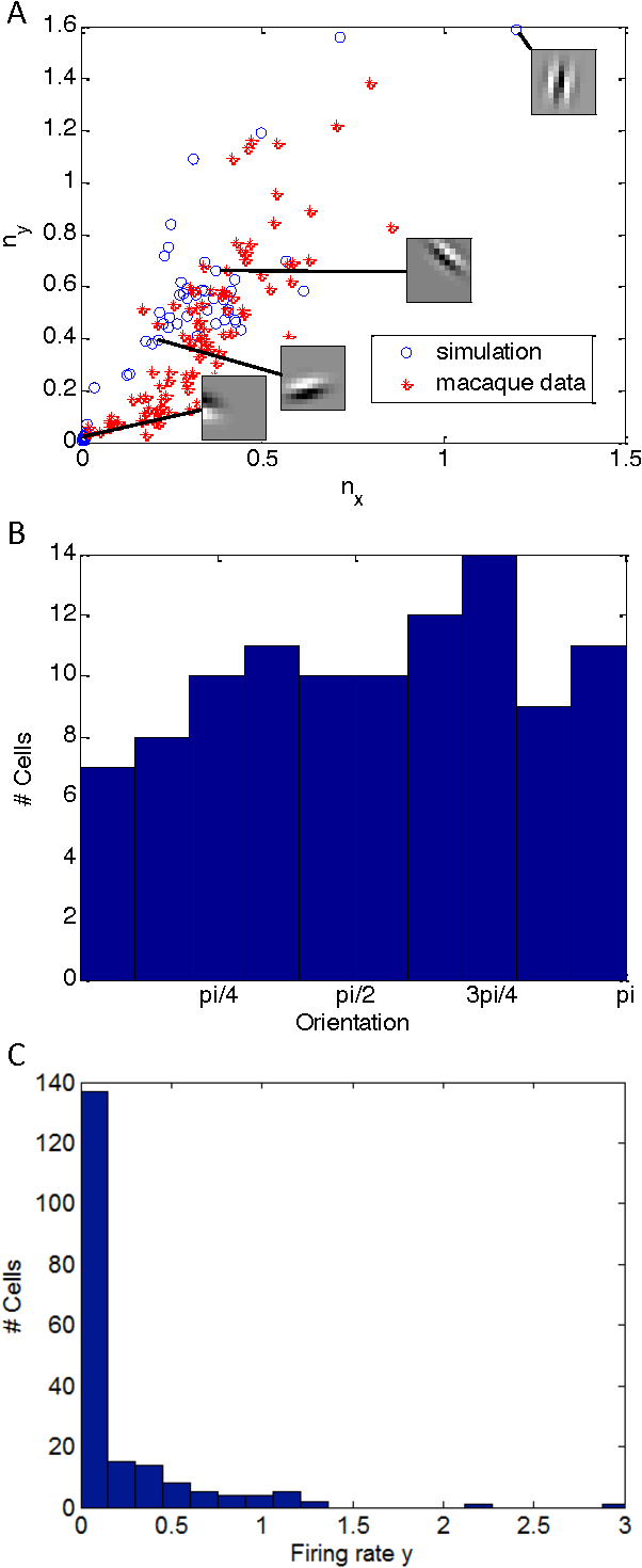 Figure 3 for A Hebbian/Anti-Hebbian Network for Online Sparse Dictionary Learning Derived from Symmetric Matrix Factorization