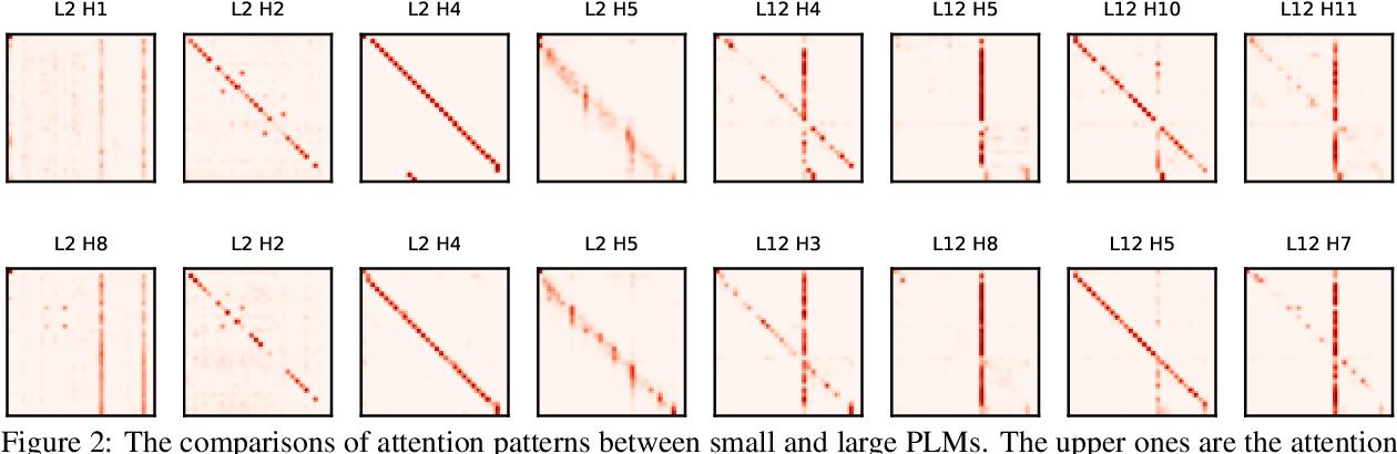 Figure 3 for bert2BERT: Towards Reusable Pretrained Language Models