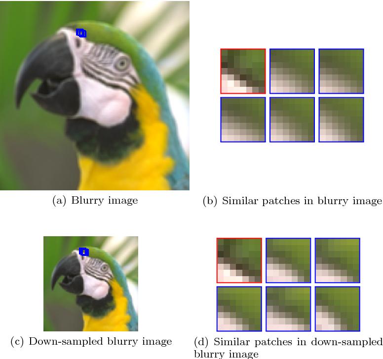 Figure 3 for Edge-Based Blur Kernel Estimation Using Sparse Representation and Self-Similarity
