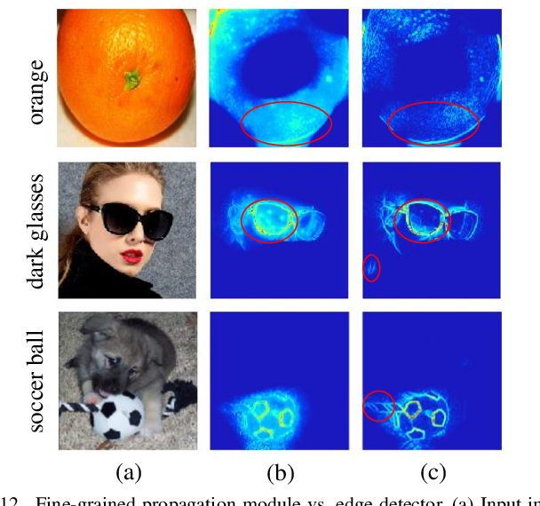 Figure 4 for TSG: Target-Selective Gradient Backprop for Probing CNN Visual Saliency