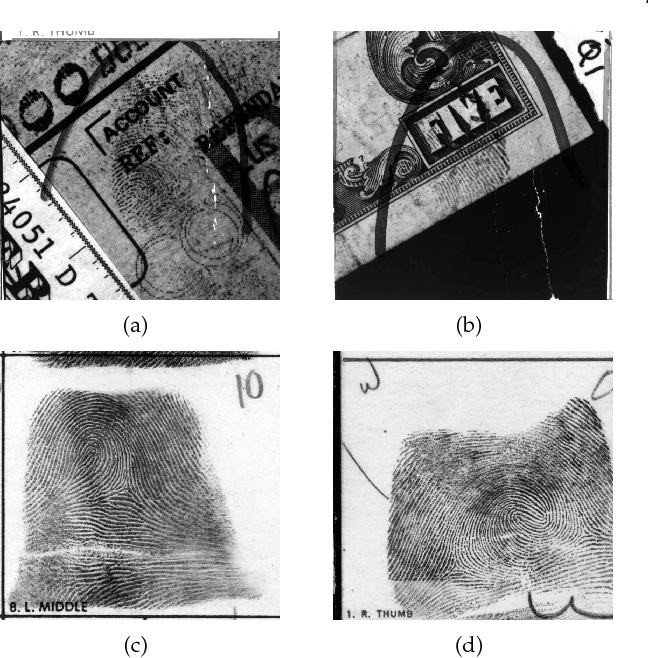 Figure 3 for Automated Latent Fingerprint Recognition