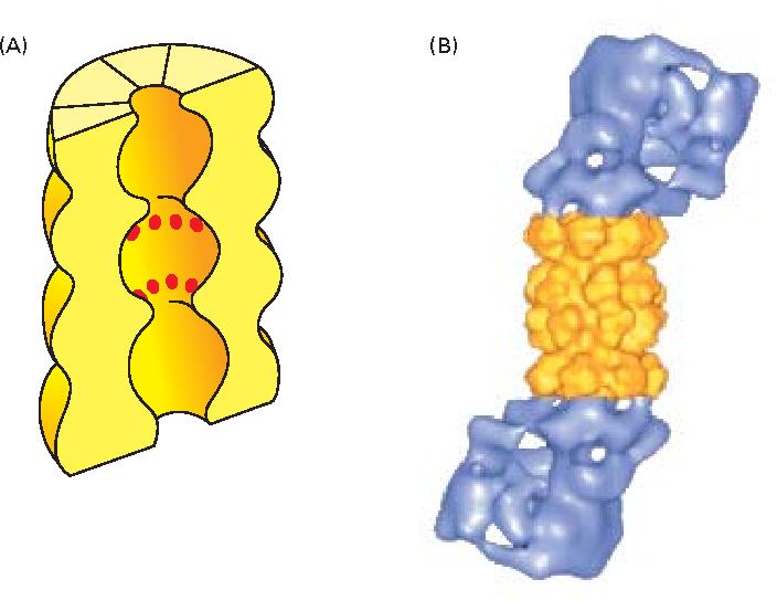 figure 6–86