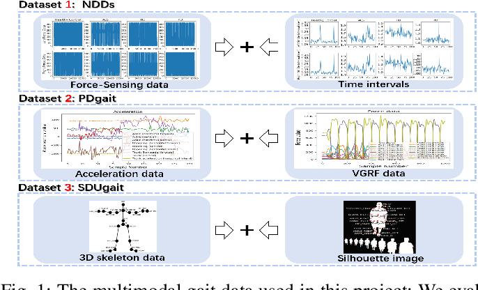 Figure 1 for Multimodal Gait Recognition for Neurodegenerative Diseases