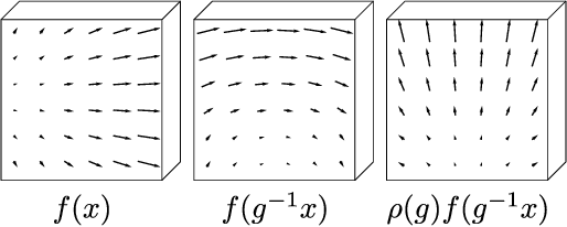 Figure 1 for 3D Steerable CNNs: Learning Rotationally Equivariant Features in Volumetric Data