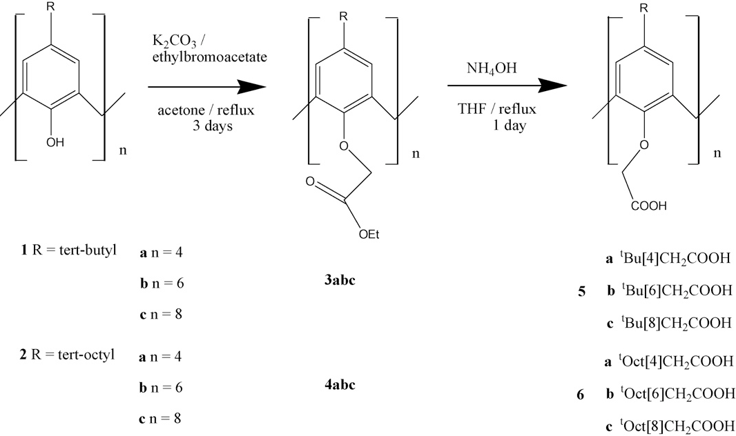 Fig. 2. Synthesis and abbreviations
