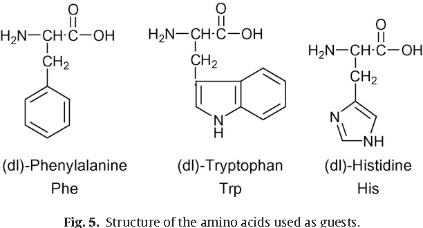 Fig. 5. Structure of the amino acids used as guests.