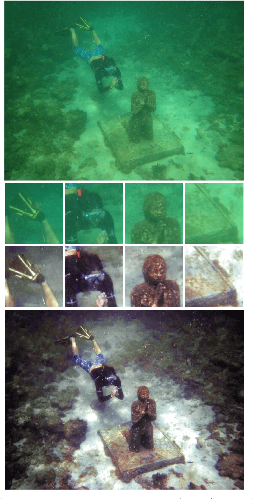 Figure 1 for Underwater Image Color Correction by Complementary Adaptation