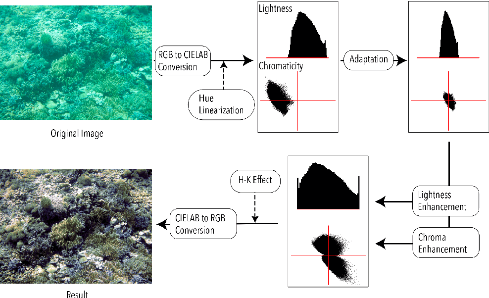 Figure 2 for Underwater Image Color Correction by Complementary Adaptation