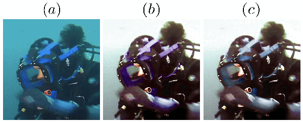 Figure 4 for Underwater Image Color Correction by Complementary Adaptation