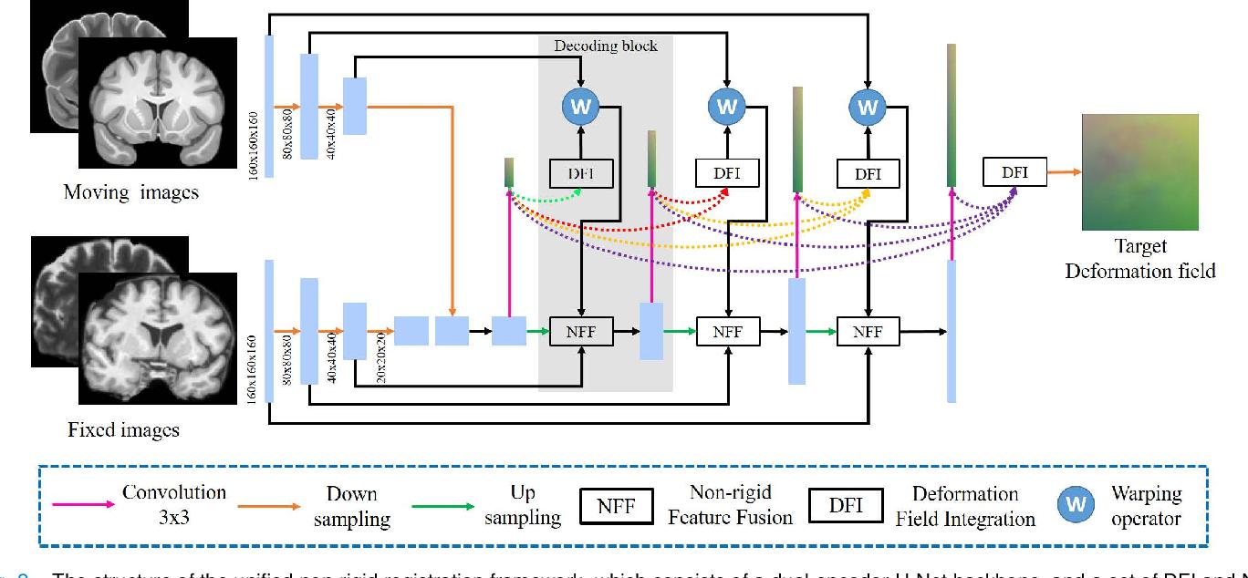 Figure 2 for Joint Progressive and Coarse-to-fine Registration of Brain MRI via Deformation Field Integration and Non-Rigid Feature Fusion