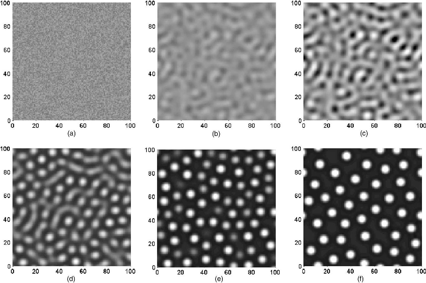 FIG. 8. Three-dimensional simulation of surface evolution based on the nonlinear analysis of both stress and wetting effect. a – f are gray scale contour plots of the thickness profile h x1 ,x2 , white for crests and dark for troughs. a Random perturbation at t=0, r .m.s . =5.77 10−5; b t=20, r .m.s . =2.07 10−5; c t=50, r .m.s . =6.27 10−5; d t=220, r .m.s . =4.86 10−2; e t=500, r .m.s . =9.11 10−2; f t=5000, r .m.s . =1.18 10−1.