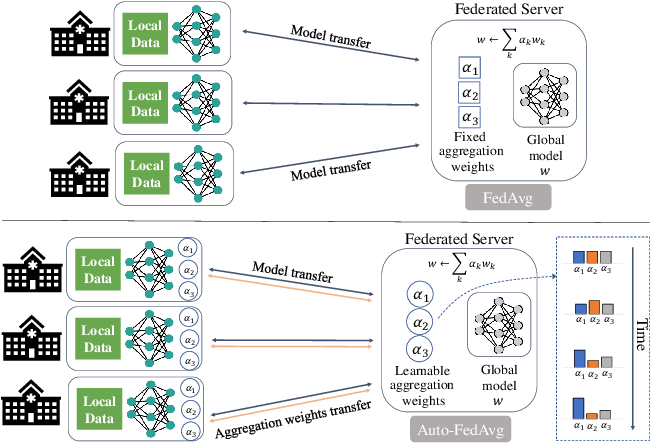 Figure 1 for Auto-FedAvg: Learnable Federated Averaging for Multi-Institutional Medical Image Segmentation