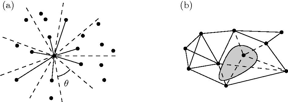 geometric spanner networks narasimhan giri smid michiel